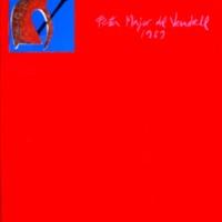 C43BIS-031.pdf